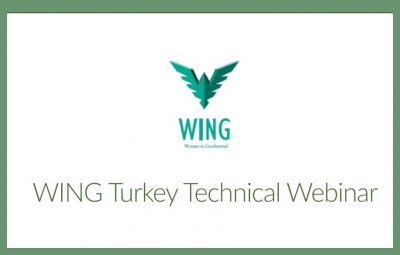 18 Mart'ta WING – Seequent'ten web semineri